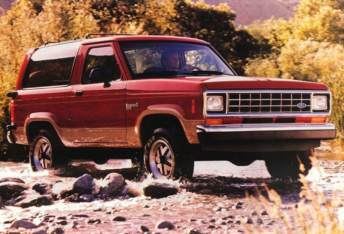 Ford Bronco Ii #7