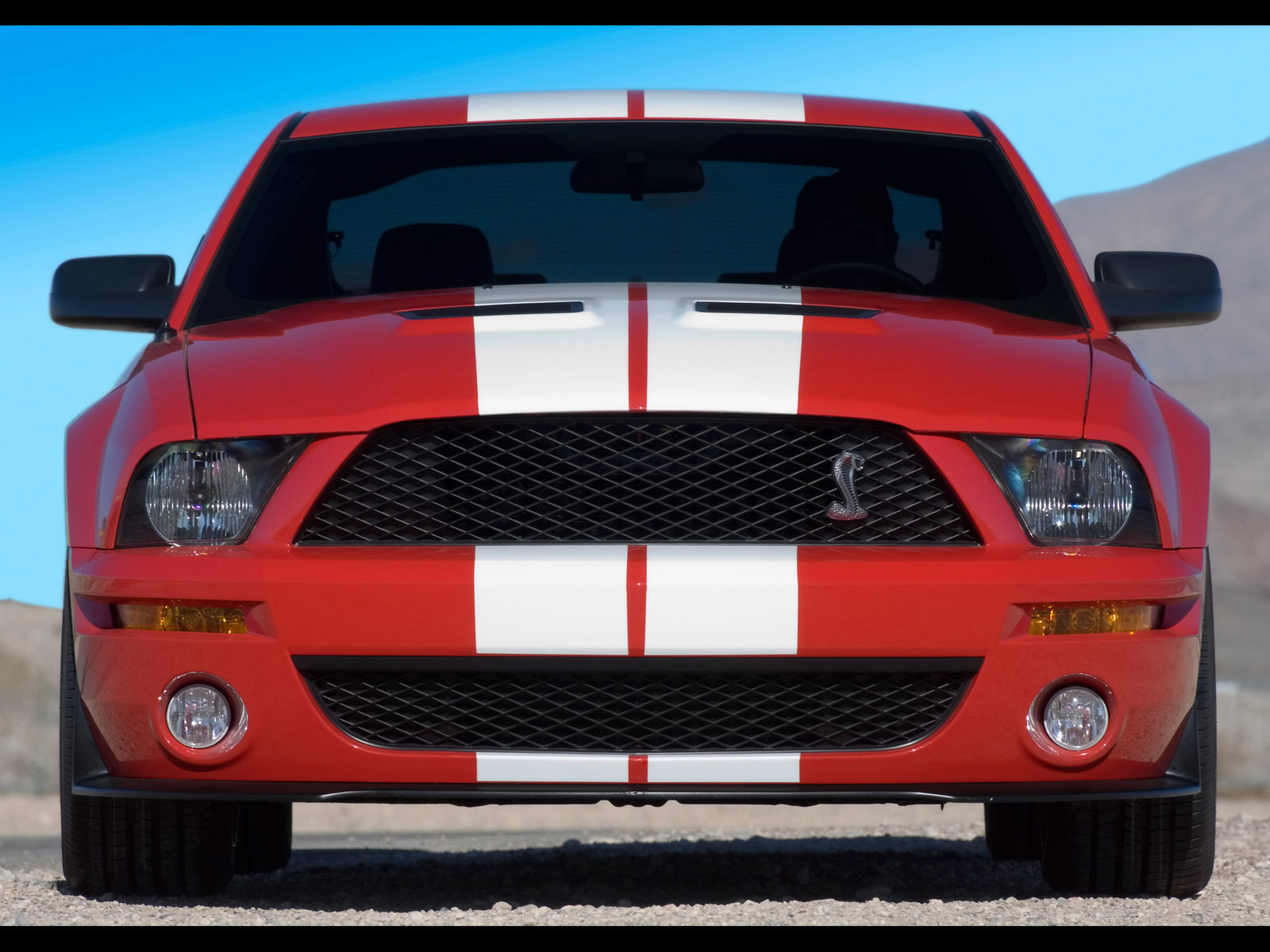 2007 Ford Shelby Gt500 #7