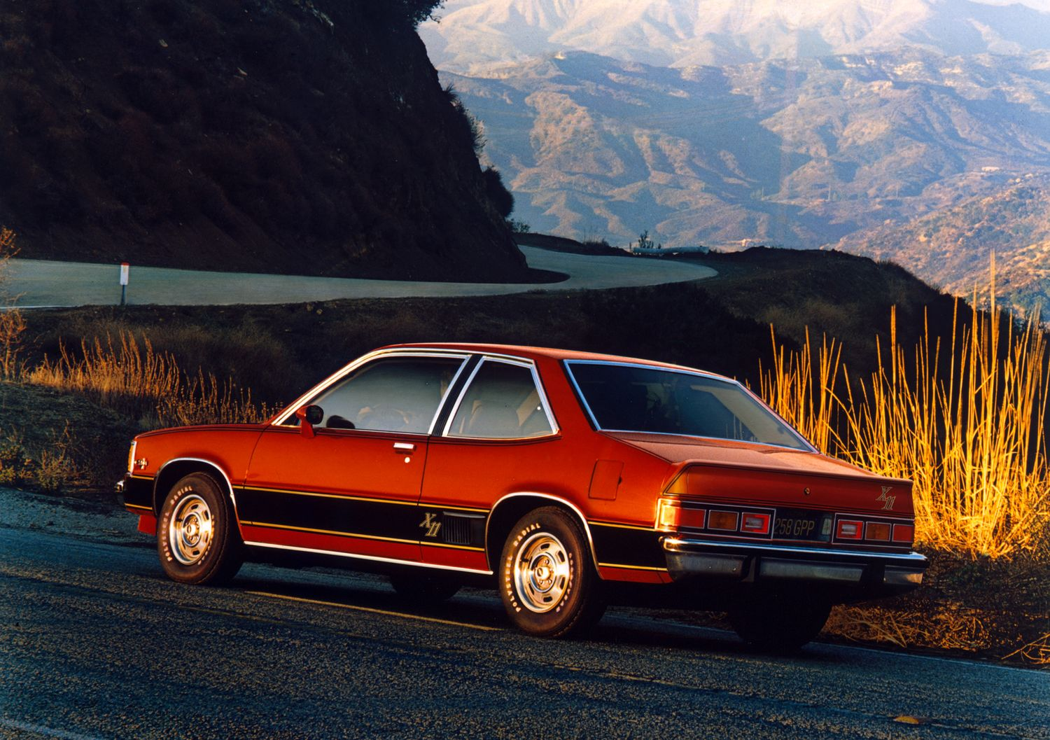 Chevrolet Citation #15