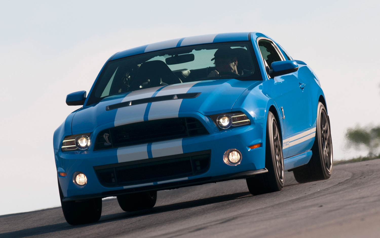 2013 Ford Shelby Gt500 #14