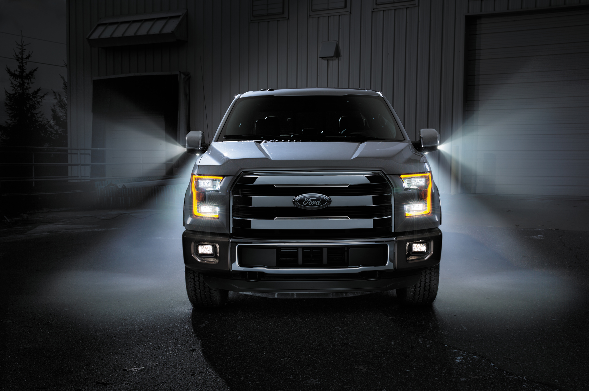 2015 Ford F-150 #12