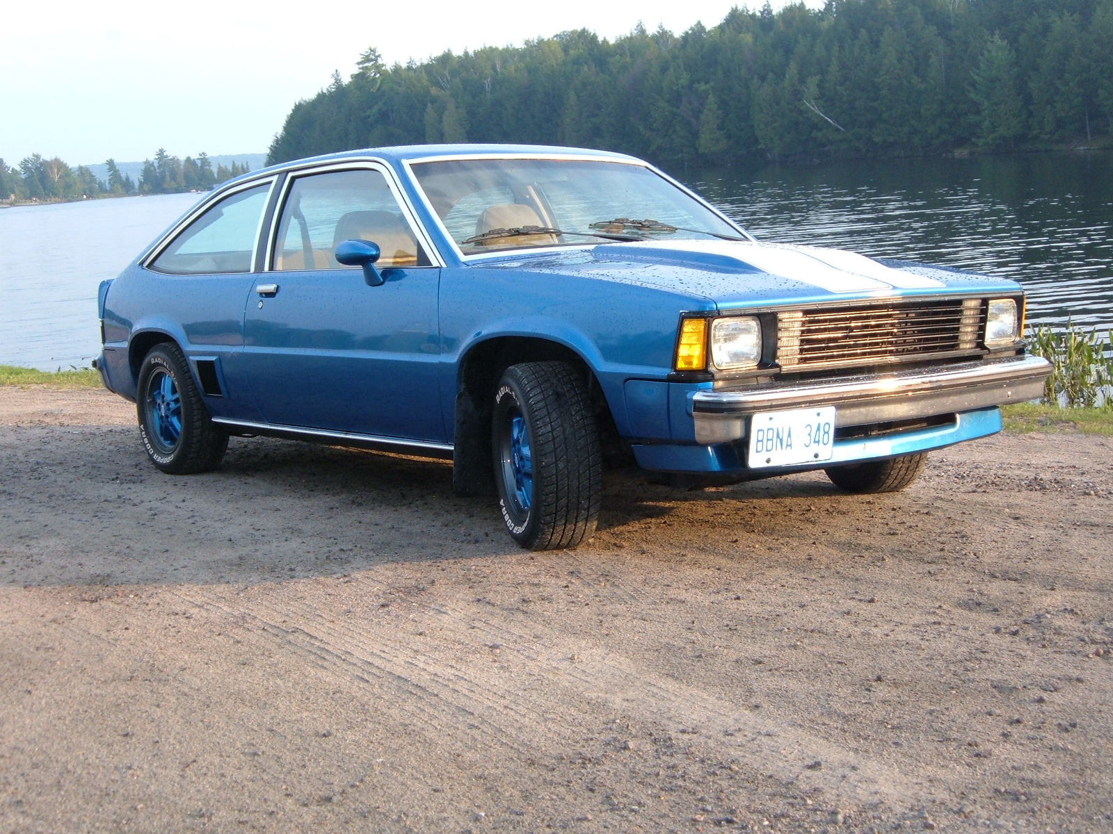 1980 Chevrolet Citation #10