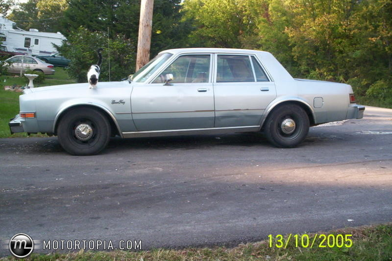 1986 Plymouth Gran Fury #12