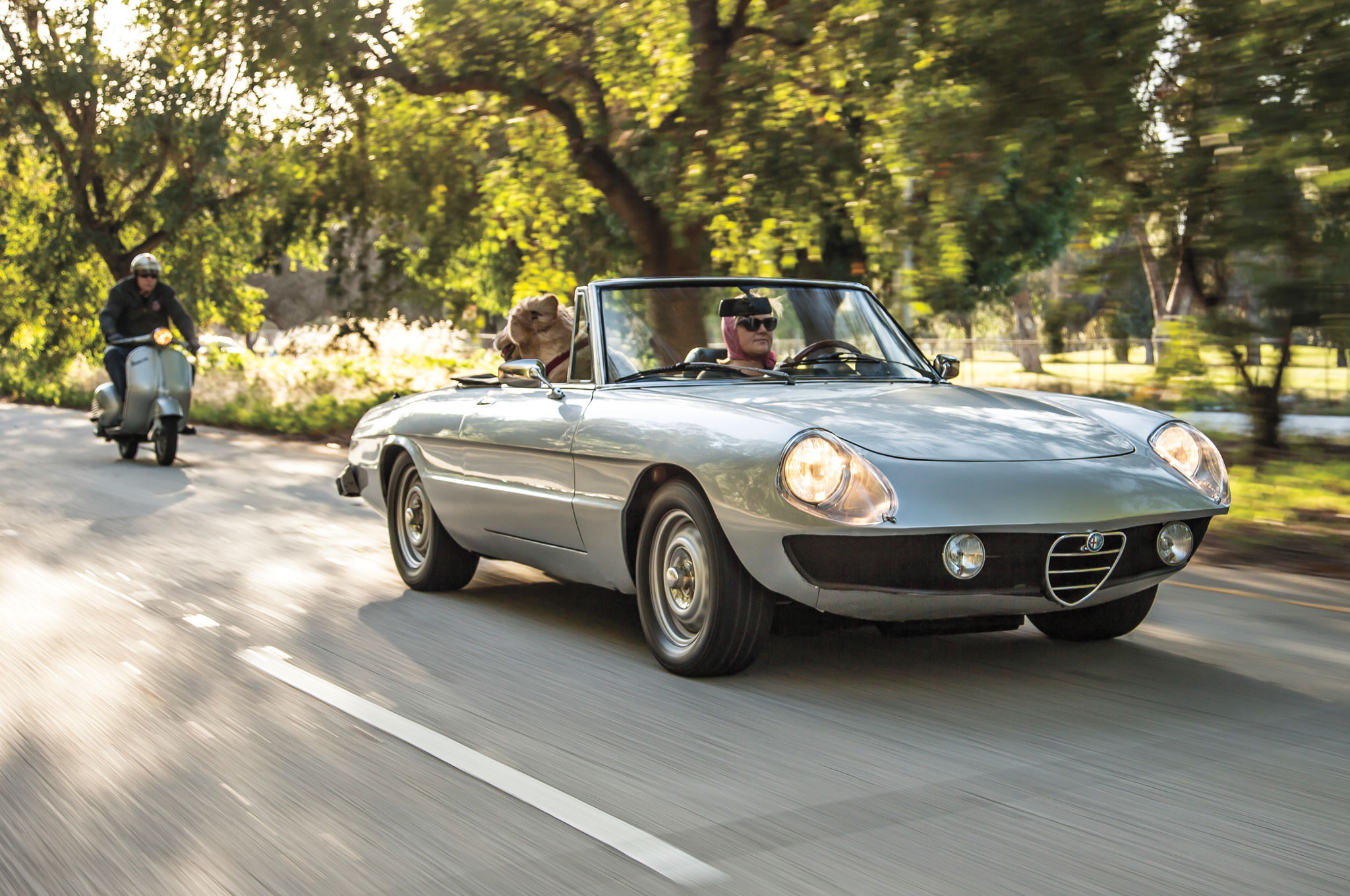 1986 alfa romeo spider veloce for sale 14