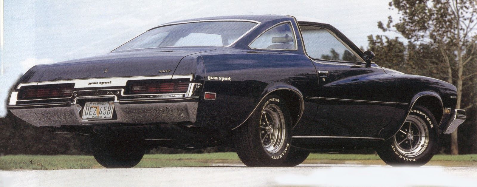 1974 Buick GS #16