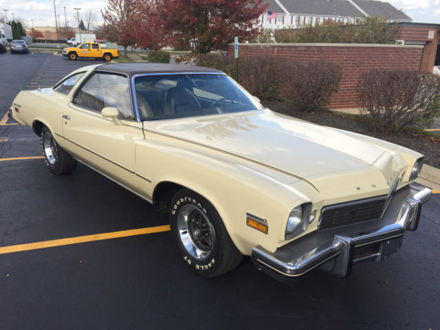 1974 Buick GS #17