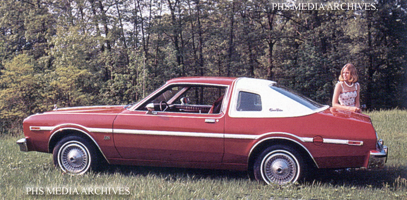 1976 Plymouth Volare #28