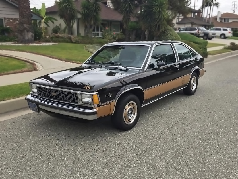 1980 Chevrolet Citation #21