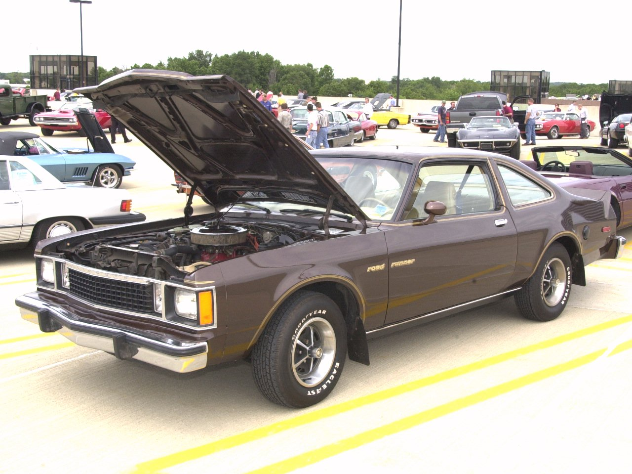 1980 Plymouth Volare #22