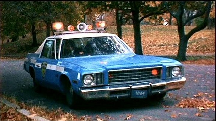 1981 Plymouth Gran Fury #19