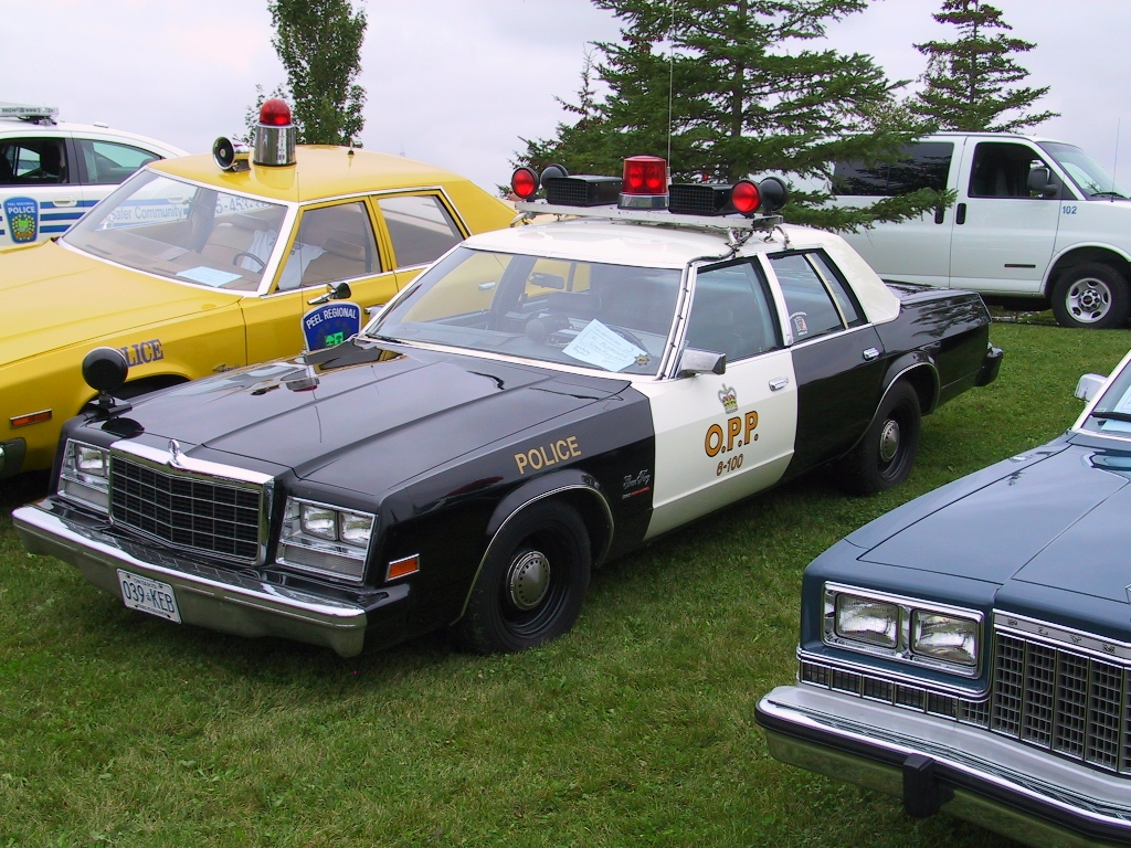 1981 Plymouth Gran Fury #18