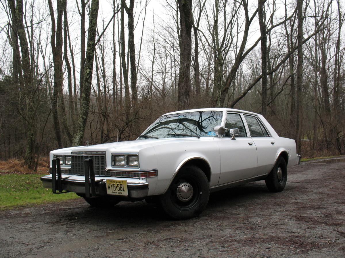 1985 Plymouth Gran Fury #19