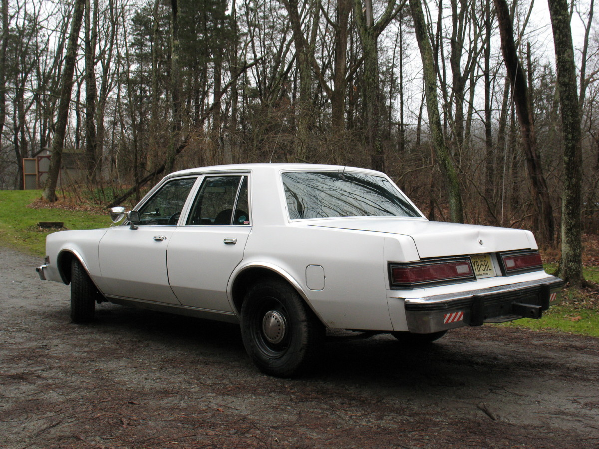 1985 Plymouth Gran Fury #18