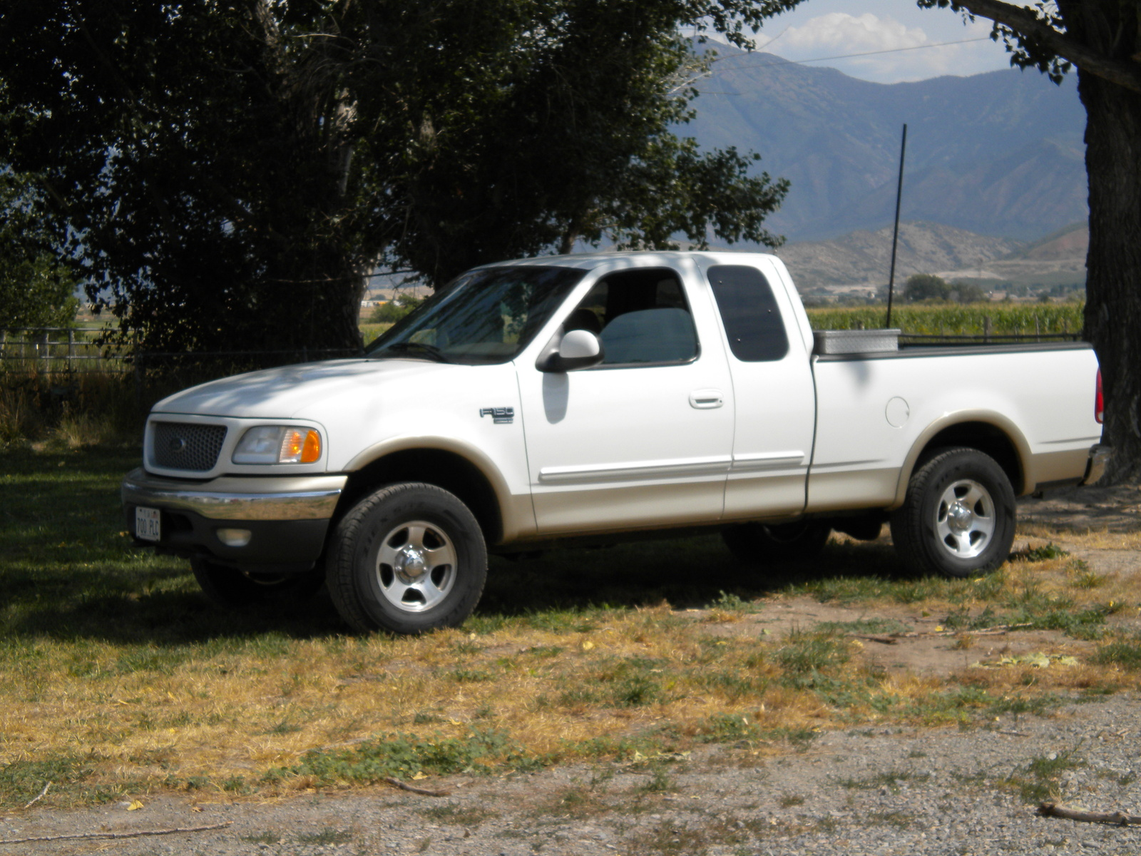 1999 Ford F-150 #19