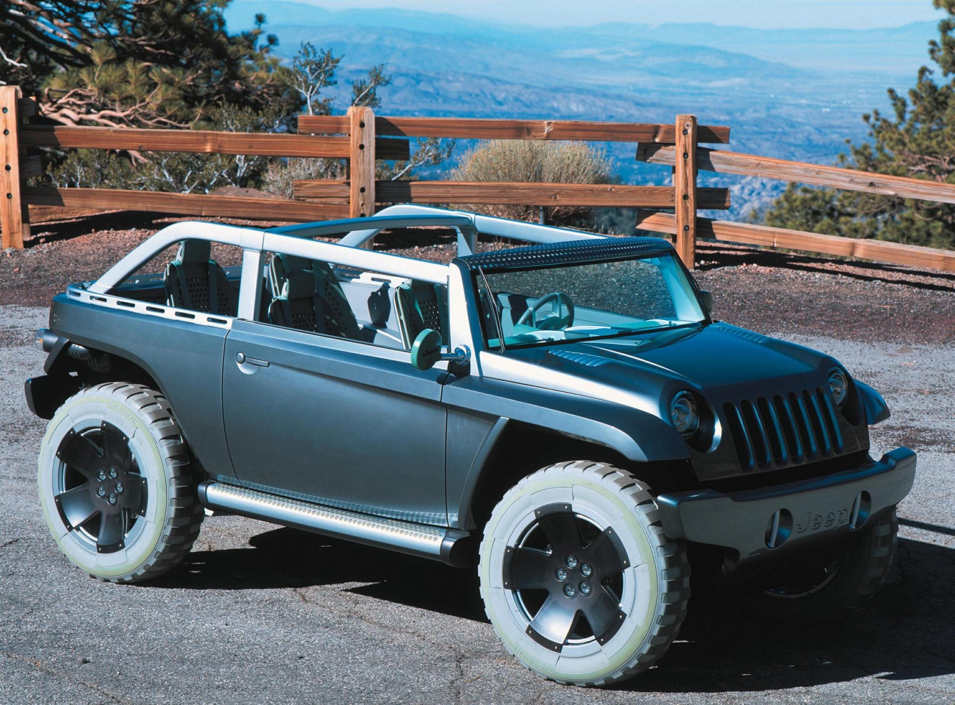 2001 Jeep Willys #23