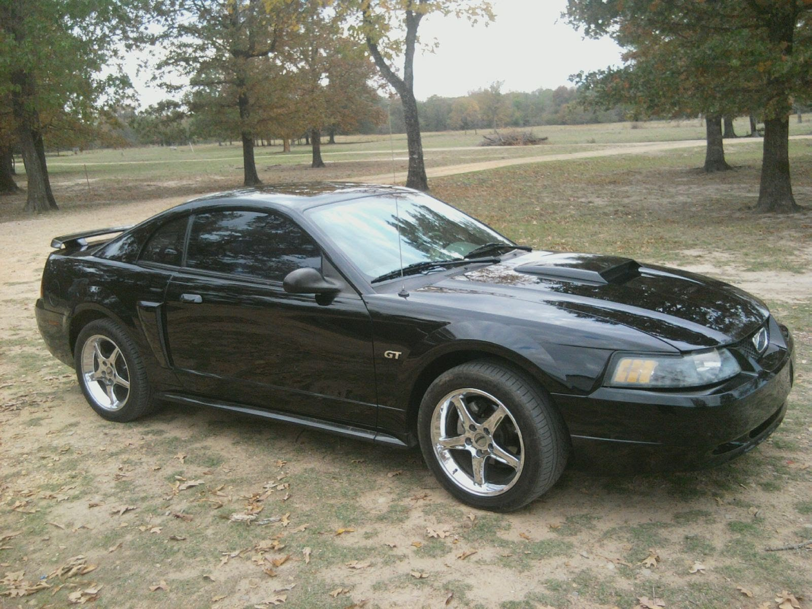 2003 Ford Mustang #20