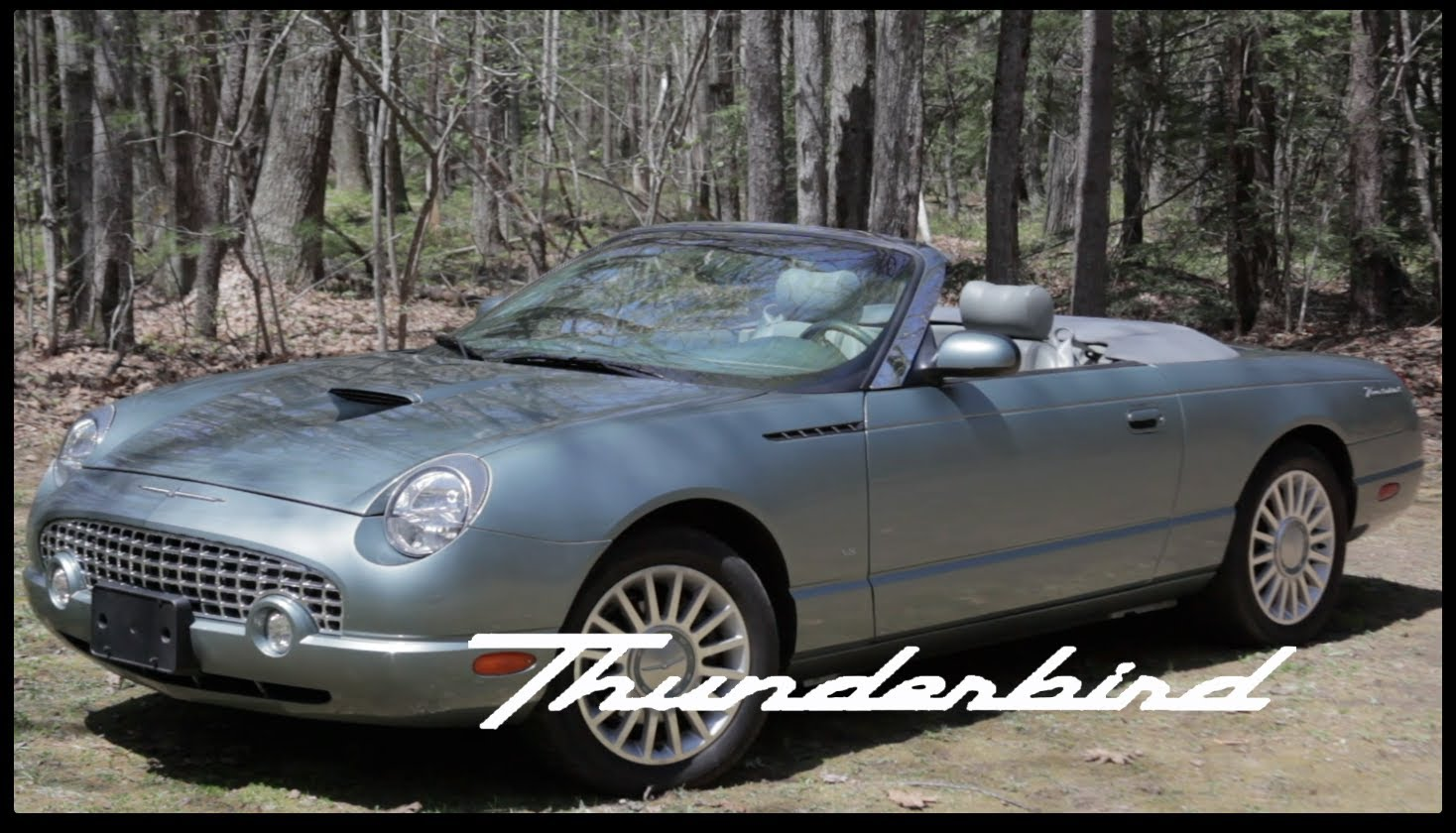 2004 Ford Thunderbird #19