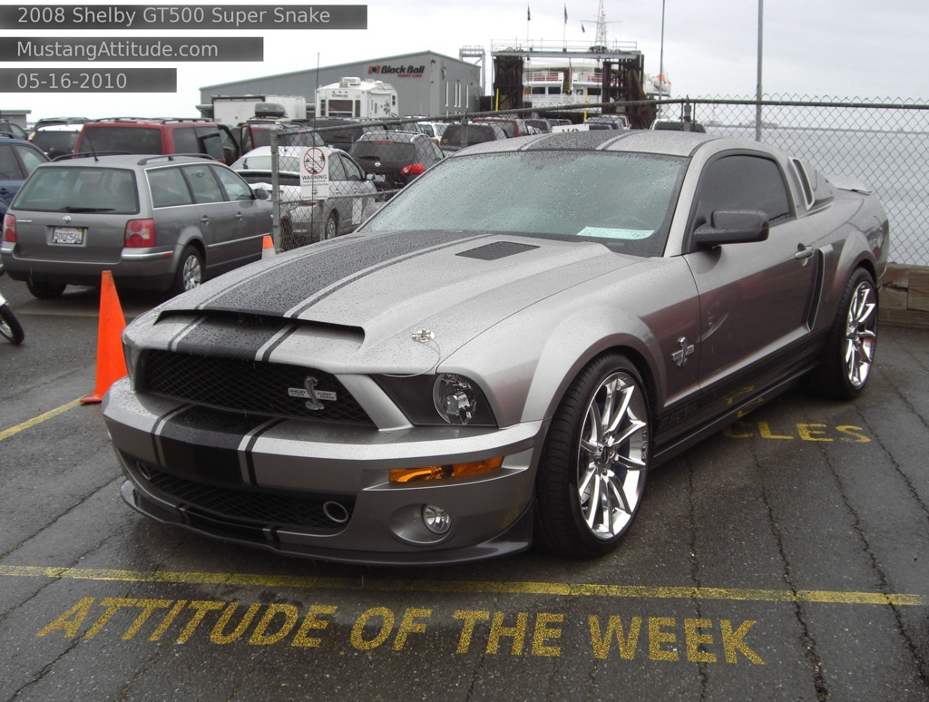 2008 Ford Shelby GT 500 #21