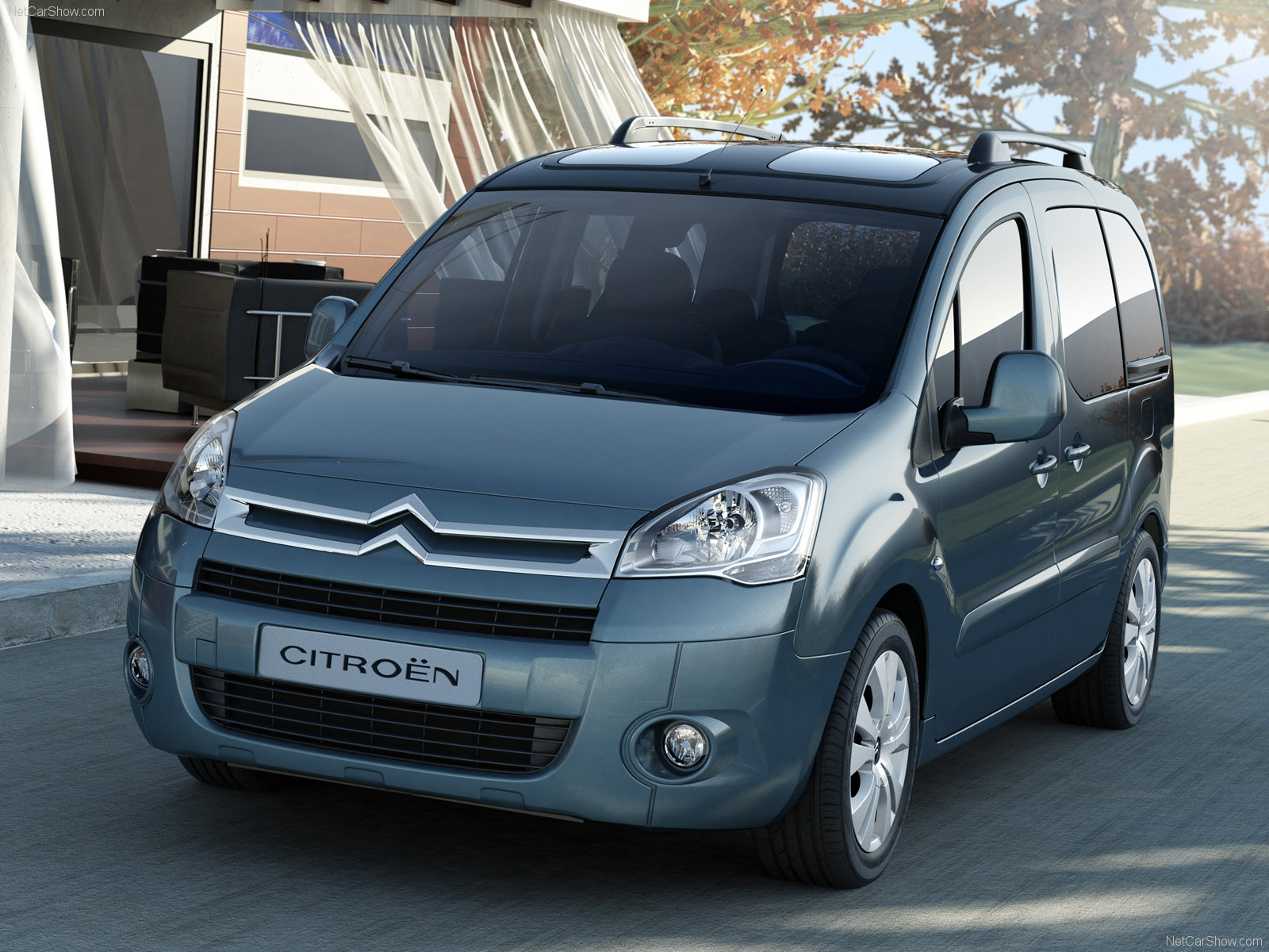 2010 Citroen Berlingo #19