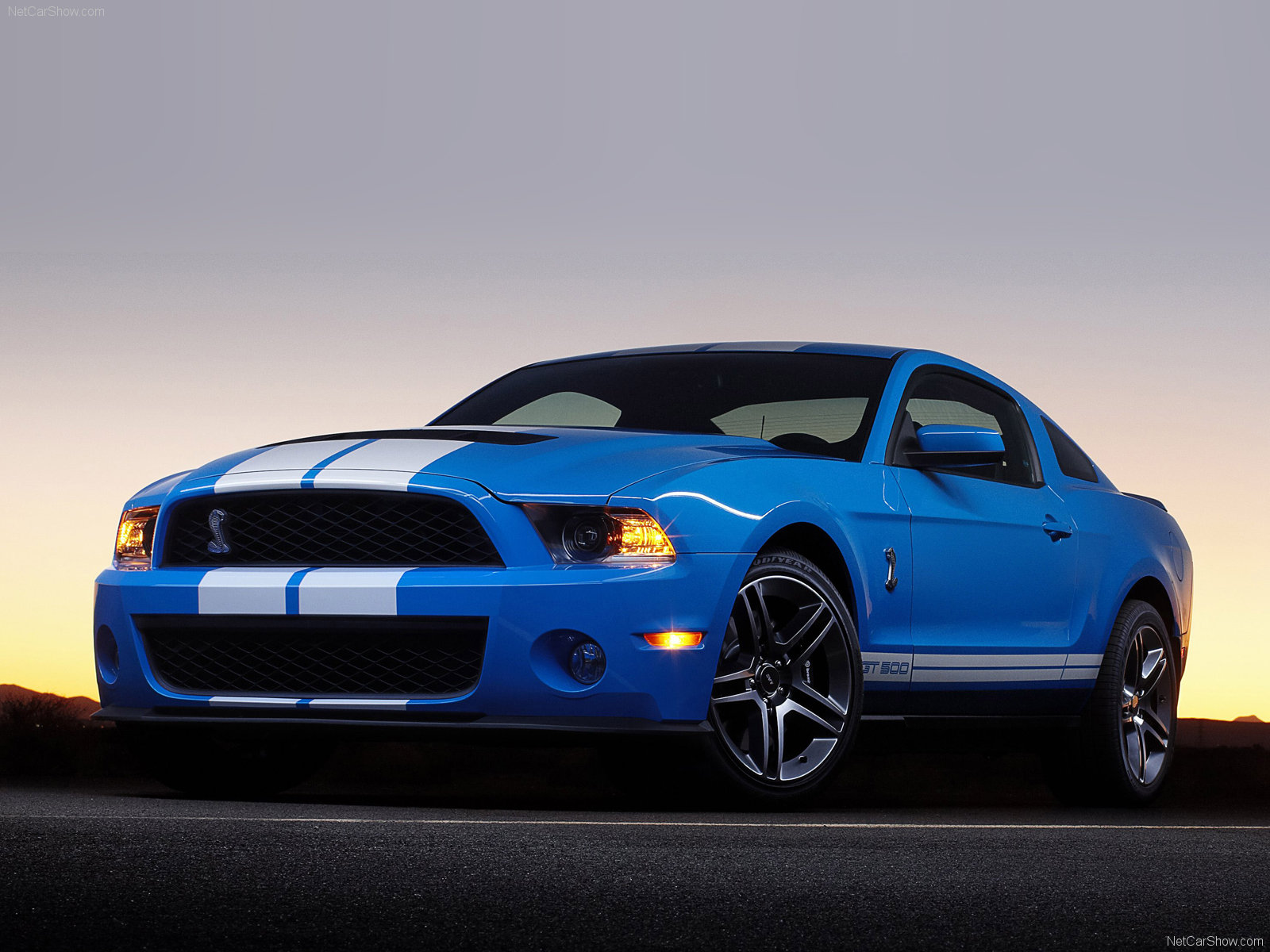2010 Ford Shelby GT 500 #17