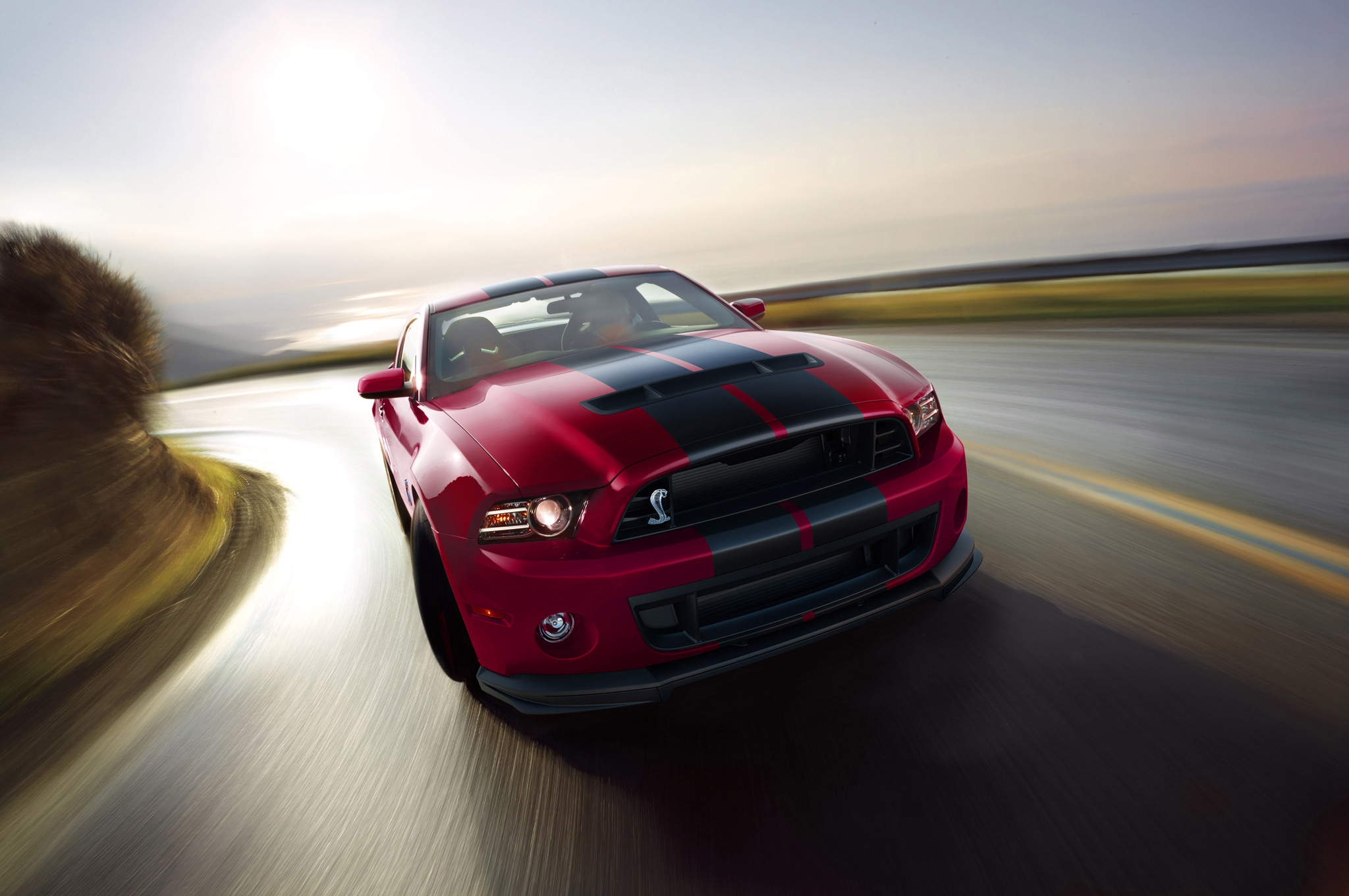 2014 Ford Shelby Gt500 #18