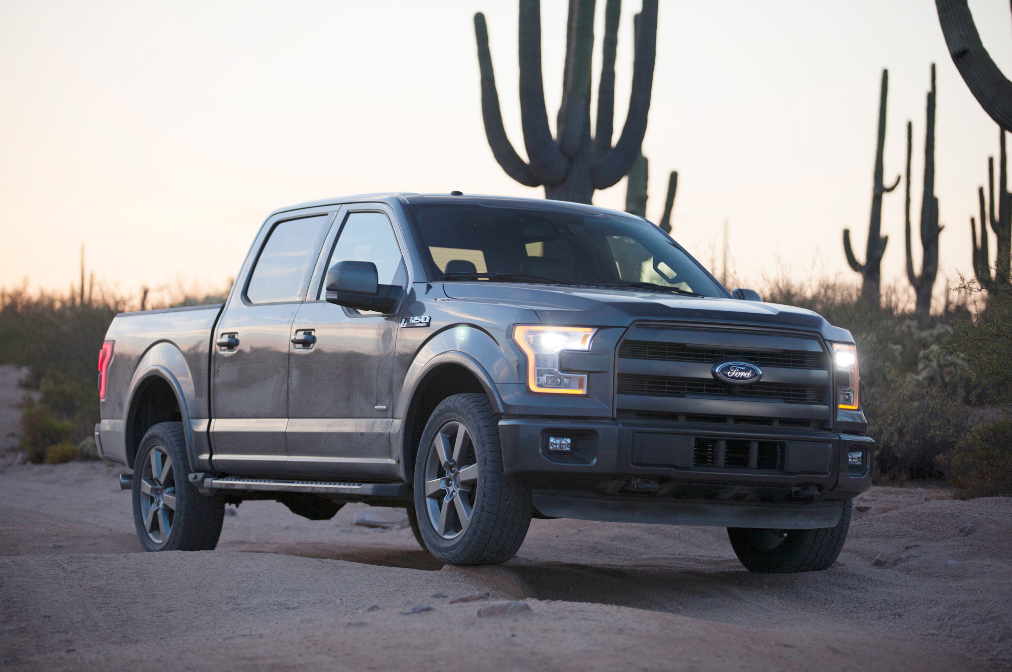 2015 Ford F-150 #21