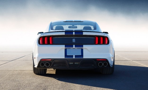 2015 Ford Shelby Gt350 #12