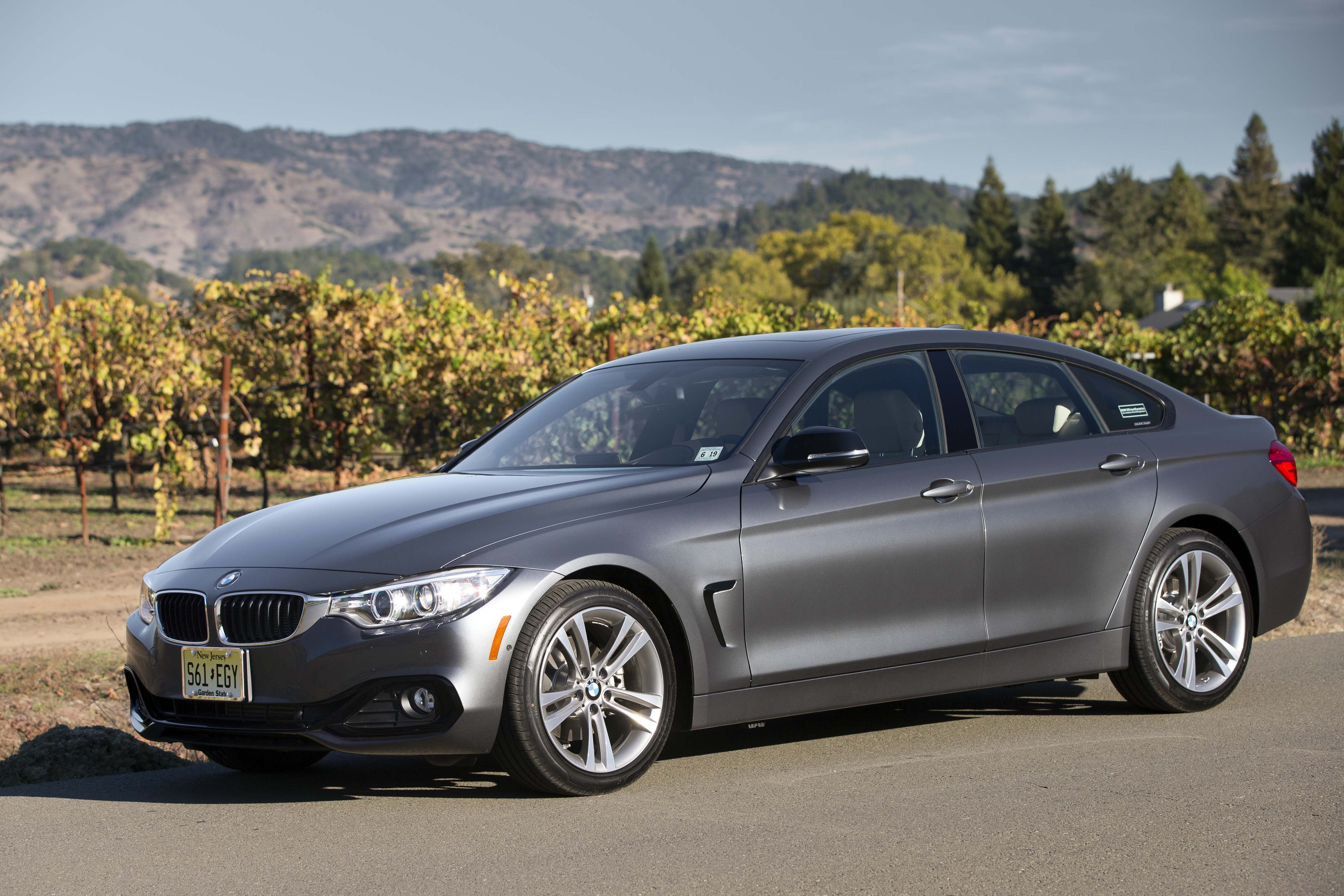 2016 Bmw 4 Series Gran Coupe #17