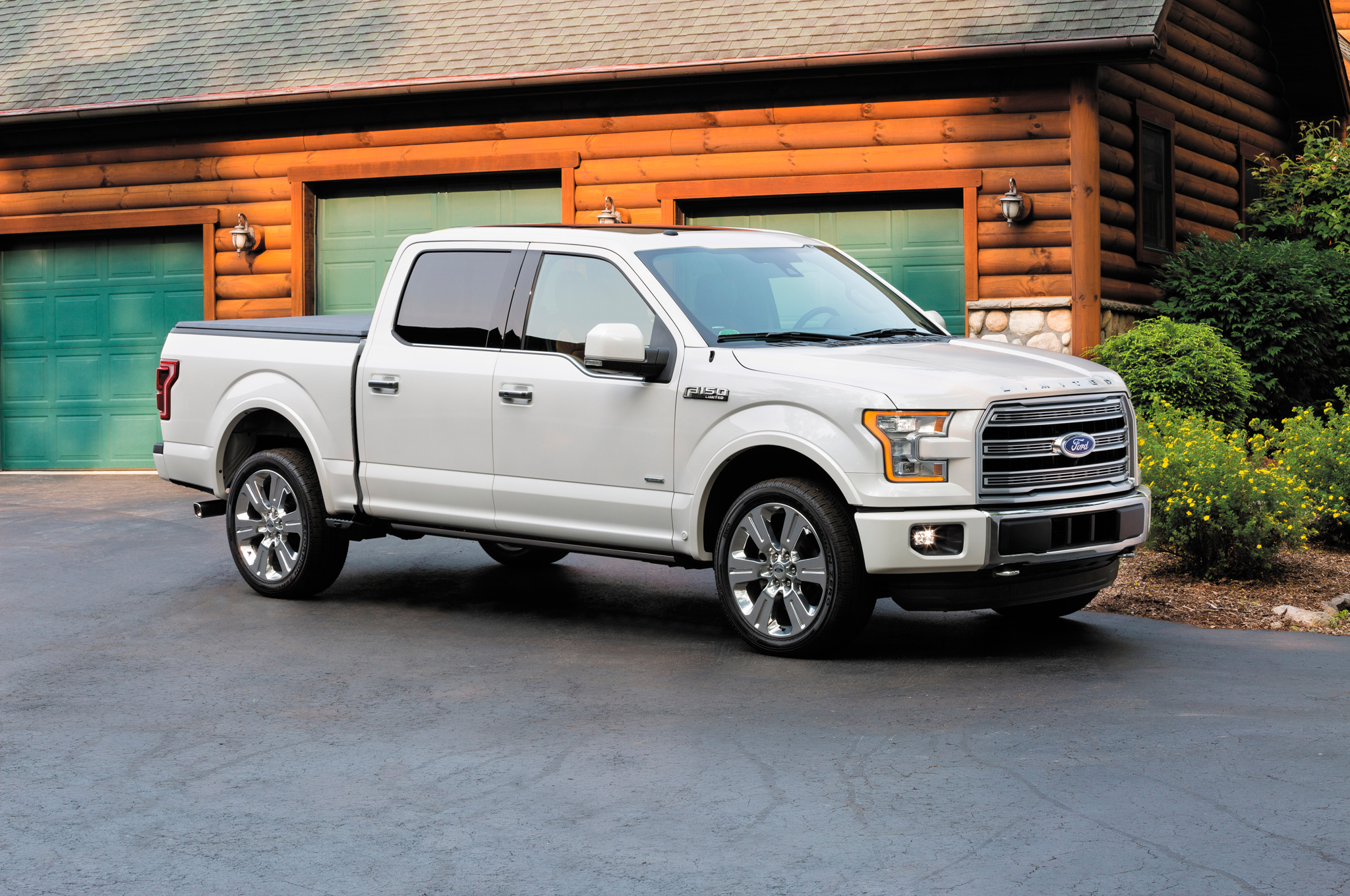 2016 Ford F-150 #3