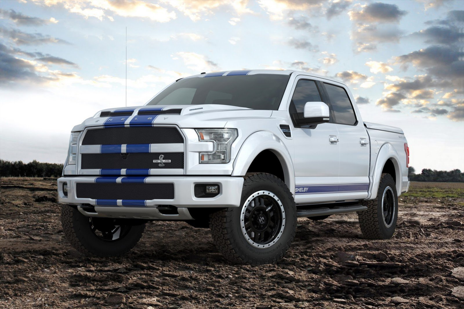 2017 Ford F-150 #13