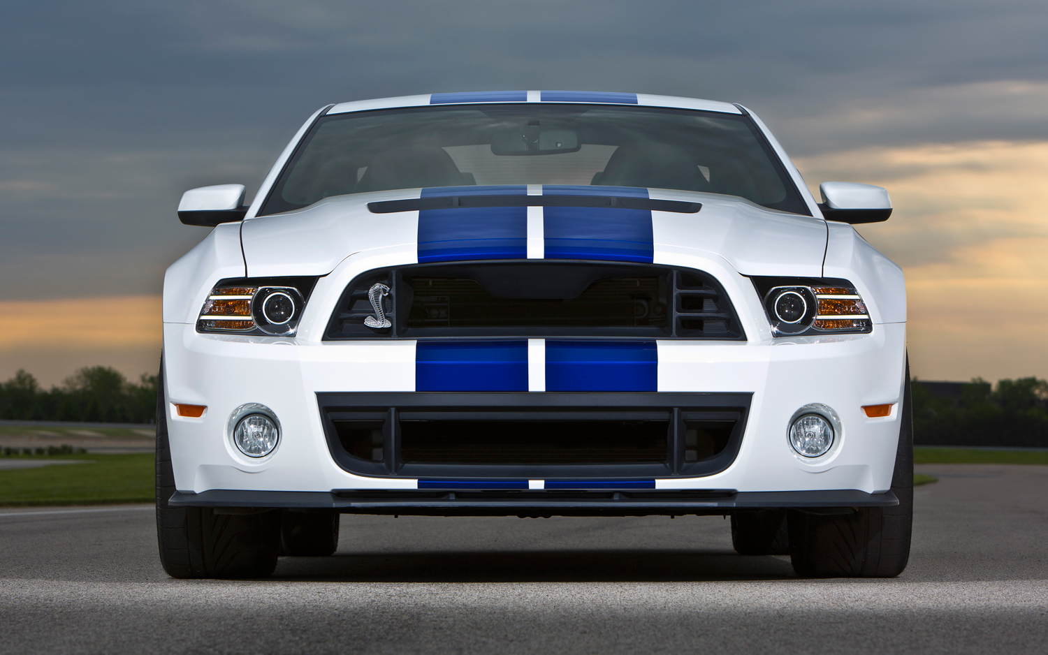 2013 Ford Shelby Gt500 #5