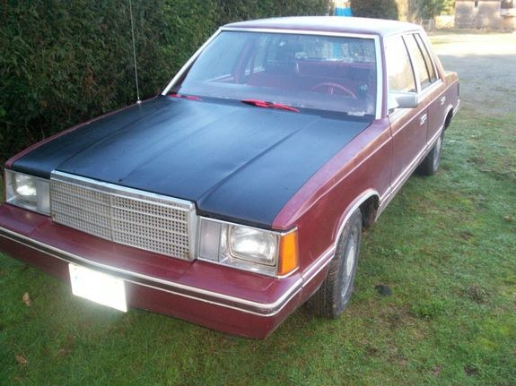 1982 Plymouth Reliant #10