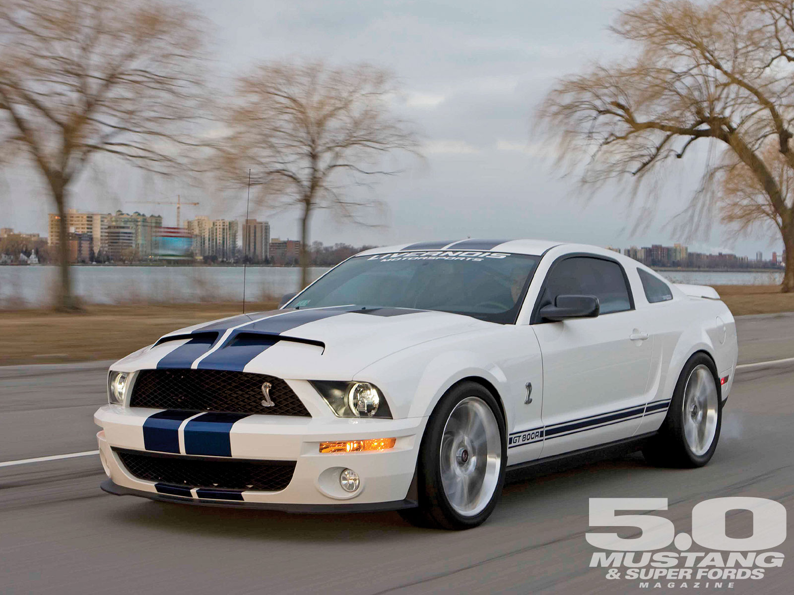 2008 Ford Shelby GT 500 #6