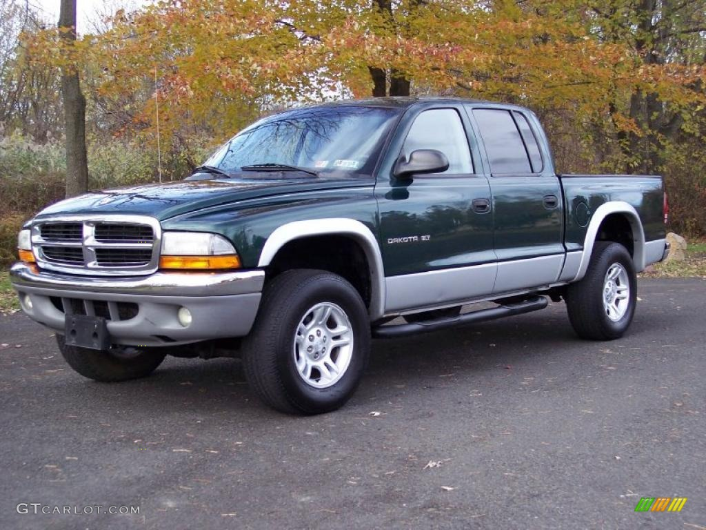 2001 Dodge Dakota #9