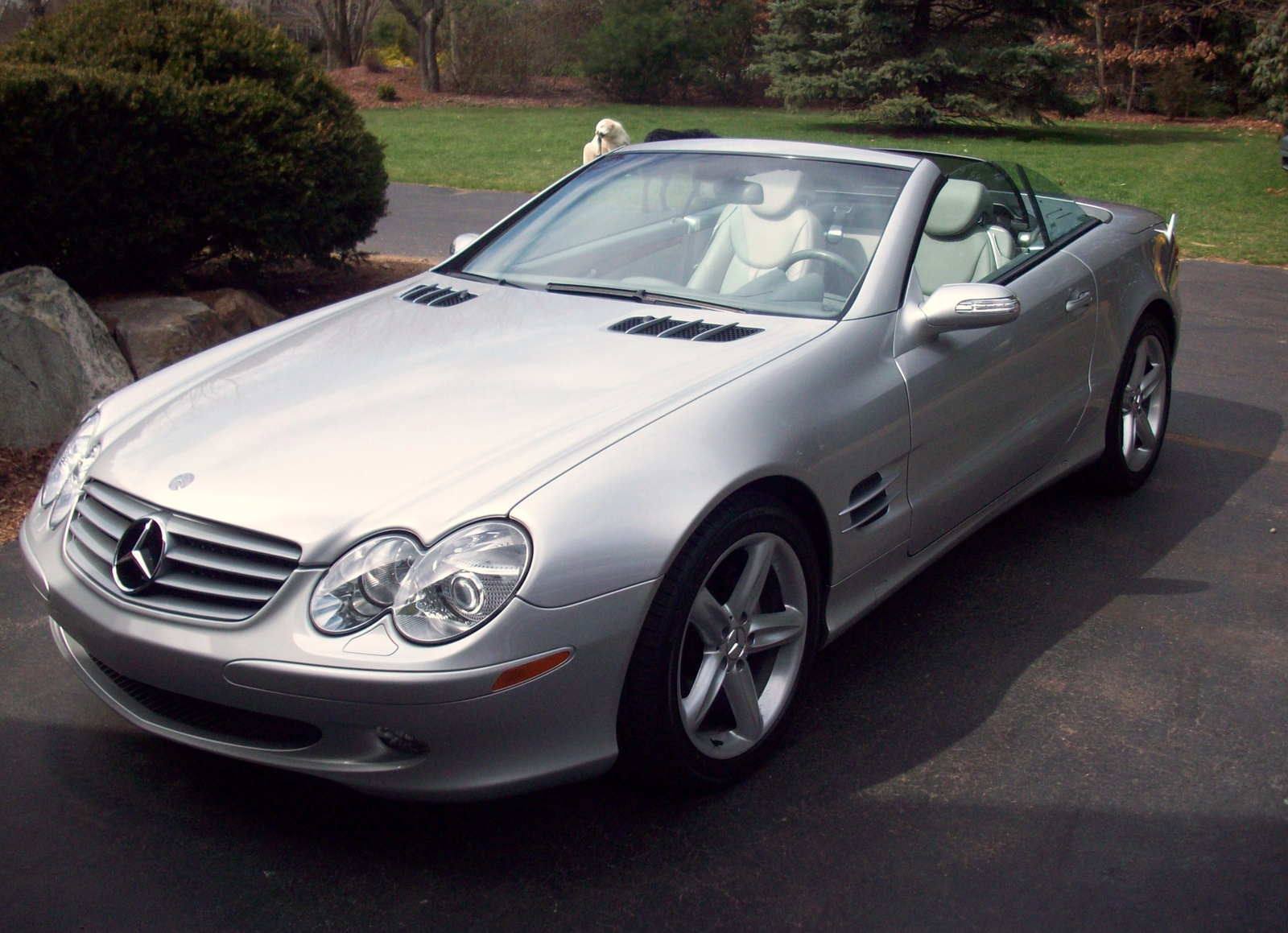 2004 Mercedes-Benz SL #8