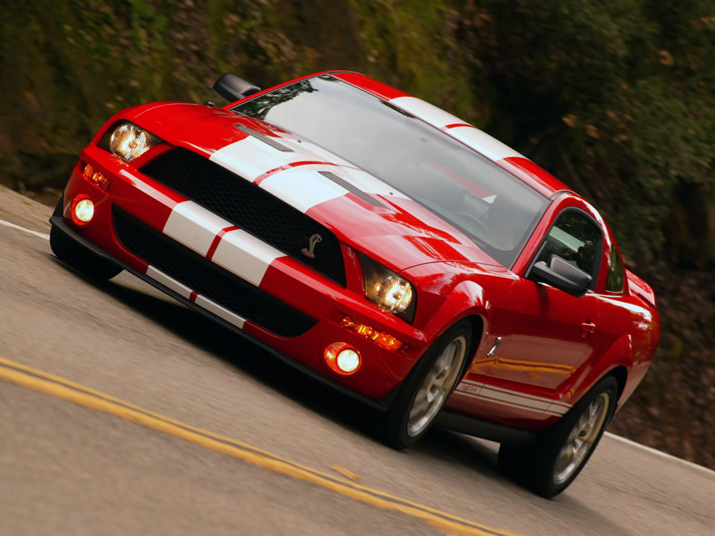 2007 Ford Shelby Gt500 #14