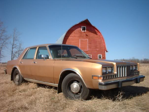 1986 Plymouth Caravelle #7