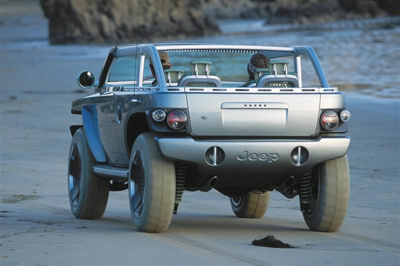 2001 Jeep Willys #11