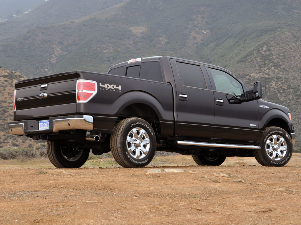 2013 Ford F-150 #11