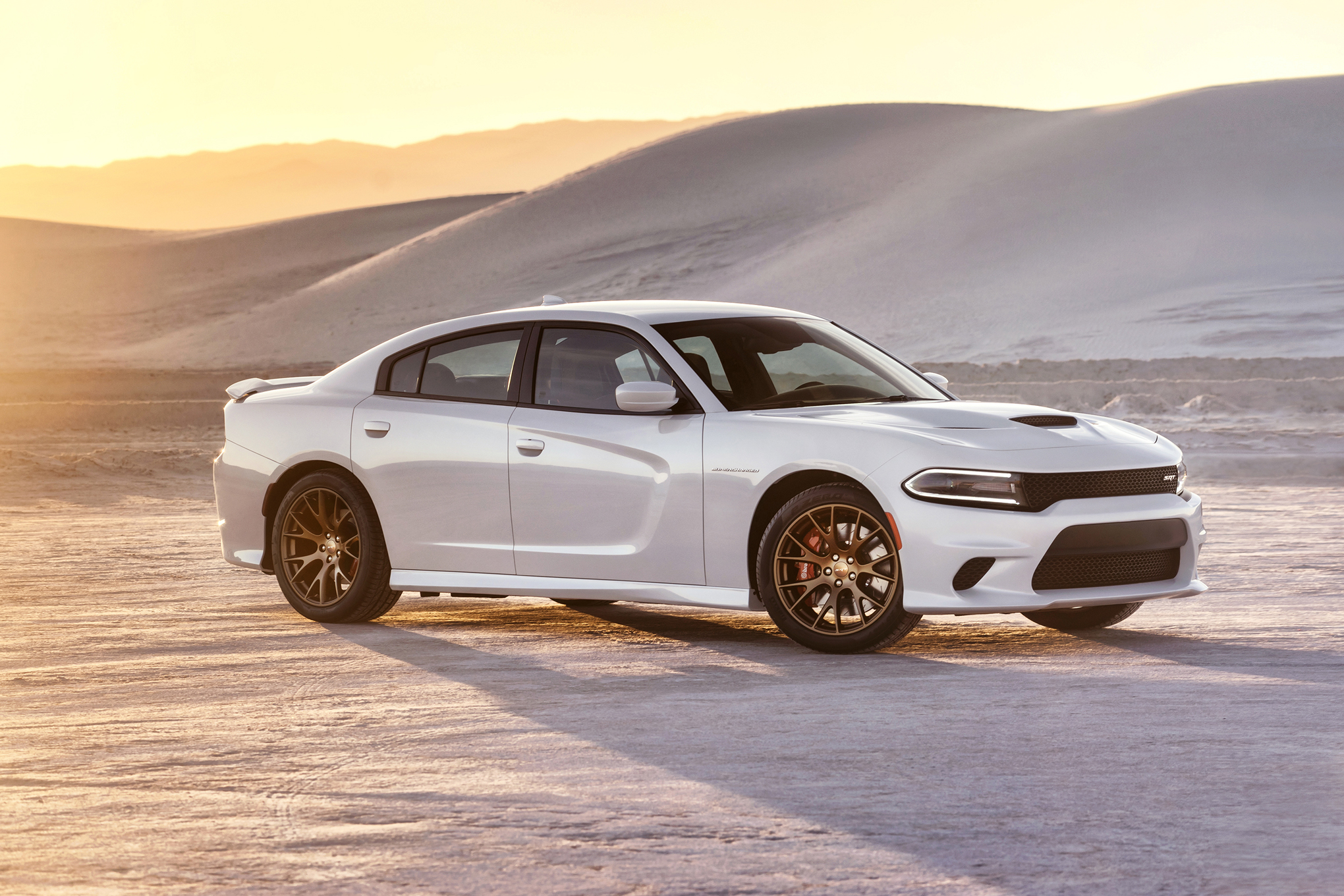 2015 Dodge Charger #10