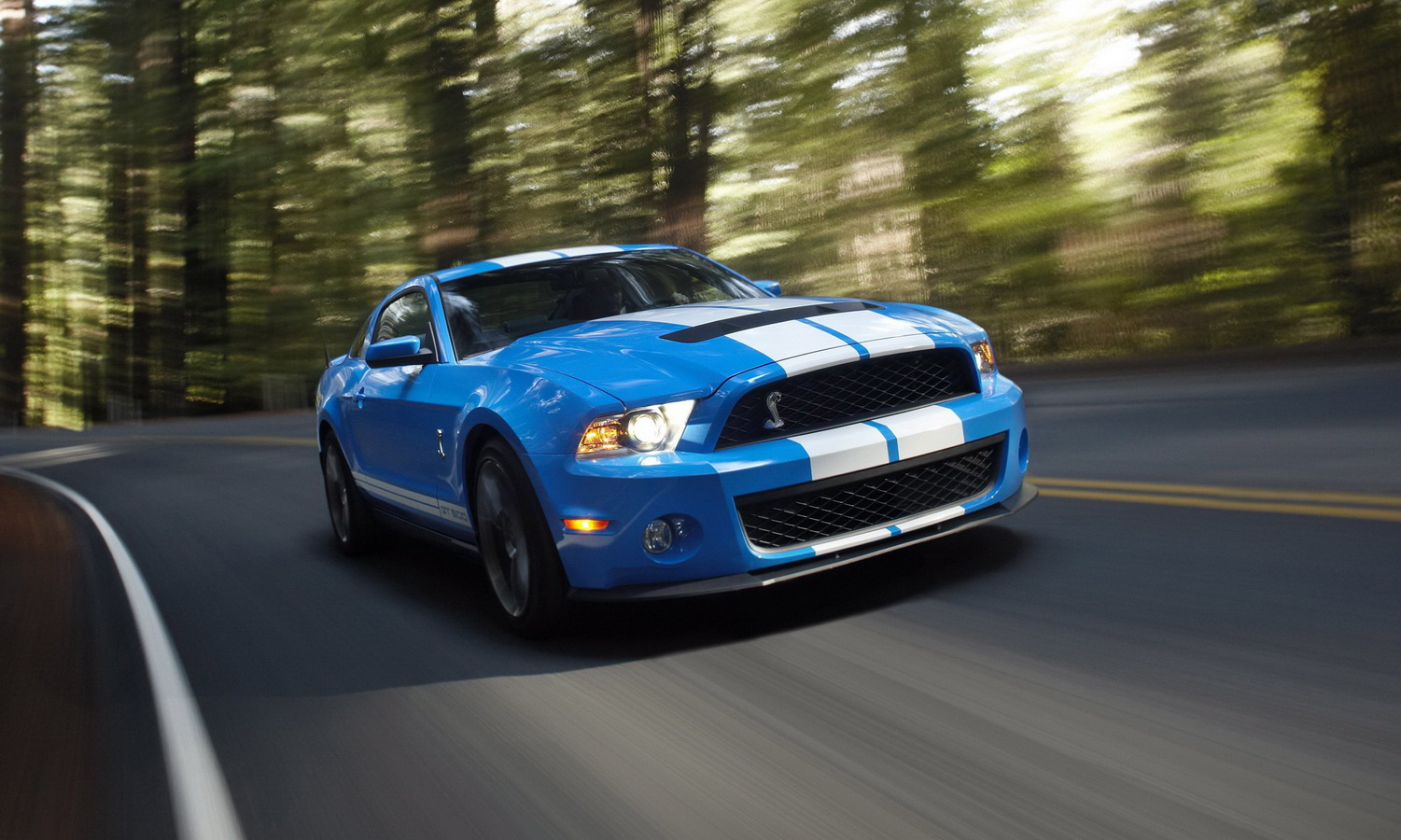 2010 Ford Shelby GT 500 #4