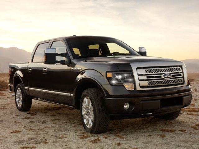 2013 Ford F-150 #14