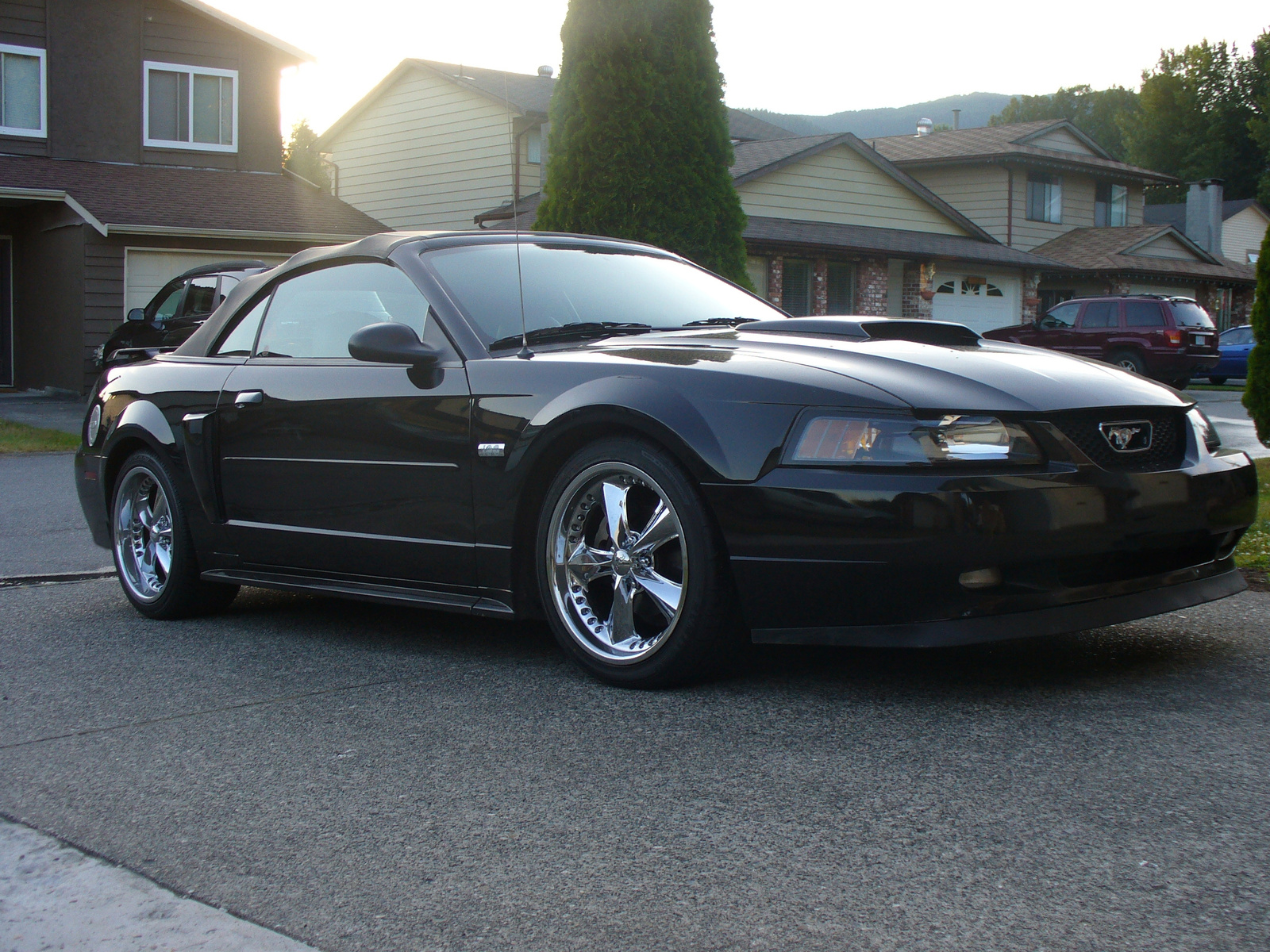 2003 Ford Mustang #10