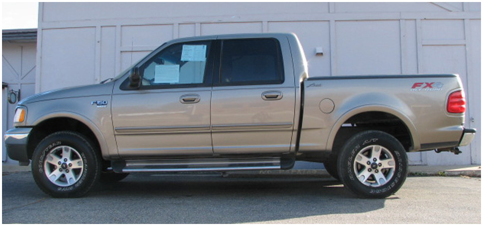 2002 Ford F-150 #2