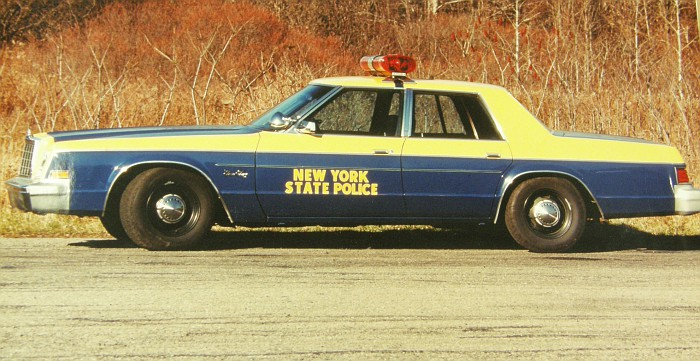 1981 Plymouth Gran Fury #10
