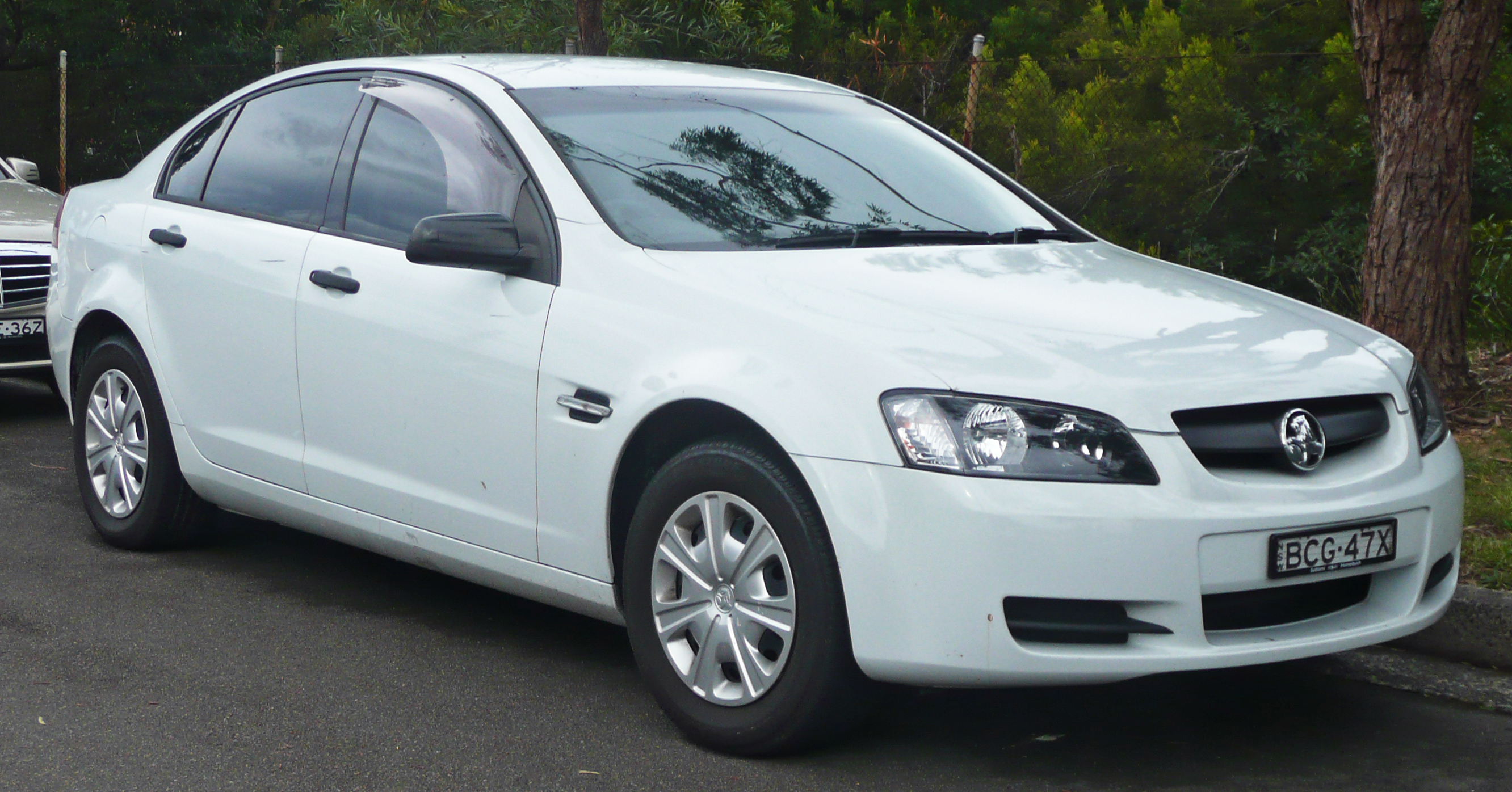Holden Commodore #8
