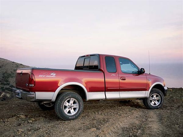 2002 Ford F-150 #4