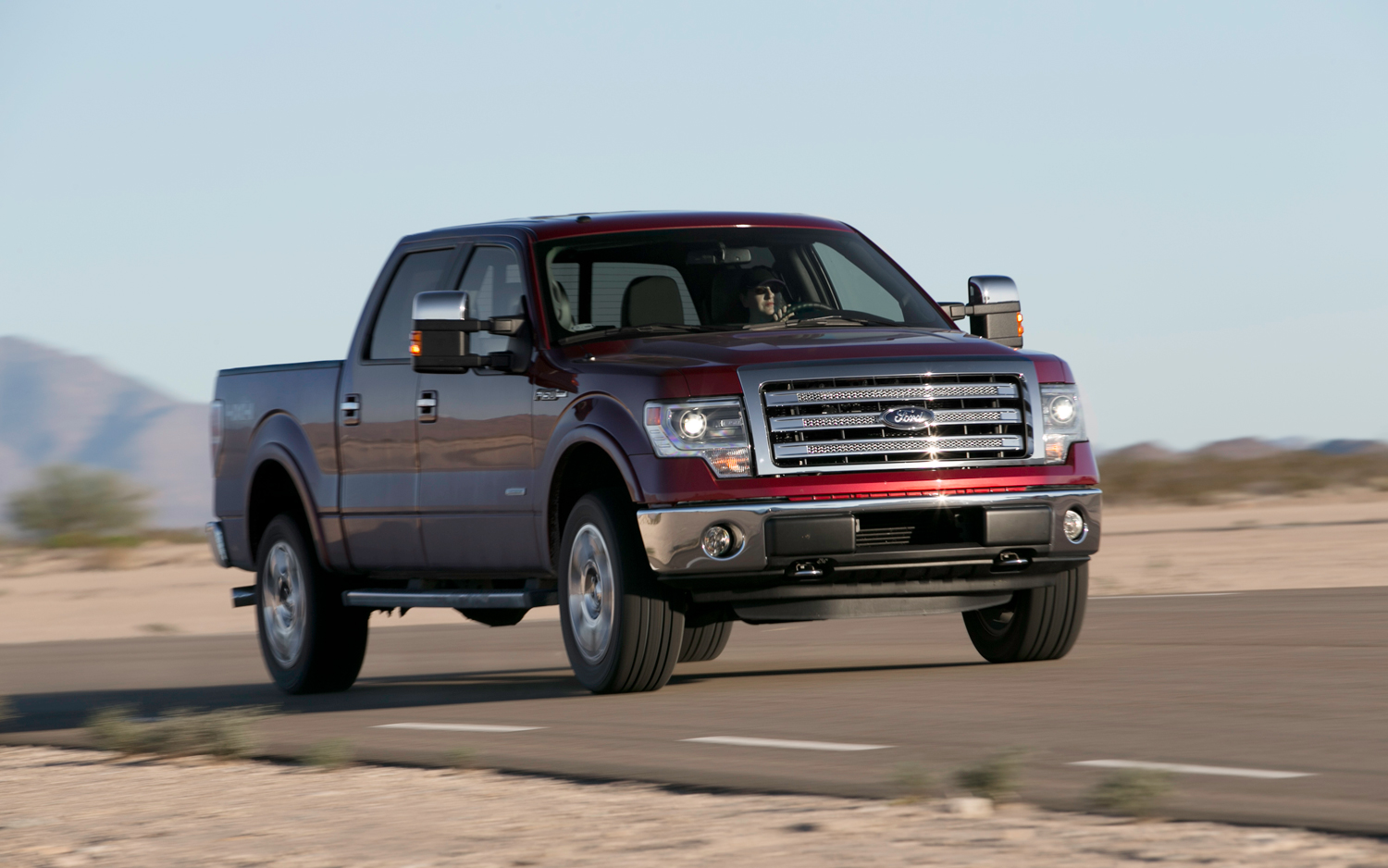 2013 Ford F-150 #18