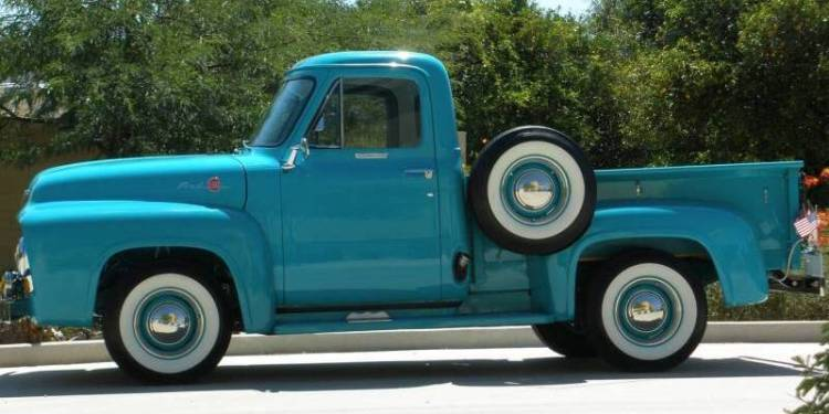 1955 Ford F #14