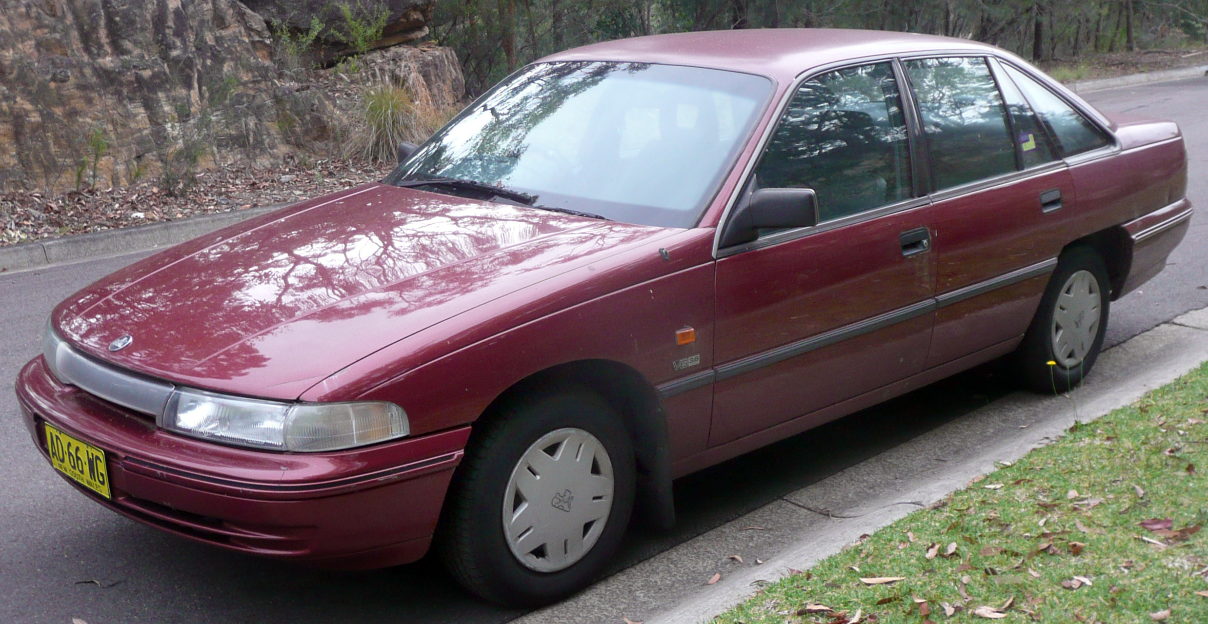 1992 Holden Commodore #2